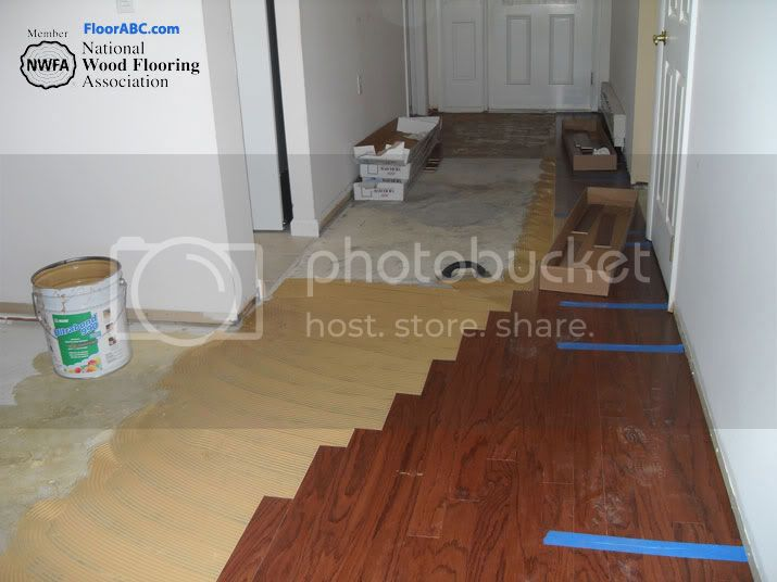 Floor Installers
